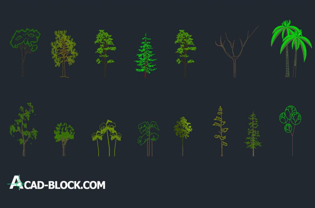 Colored high trees dwg