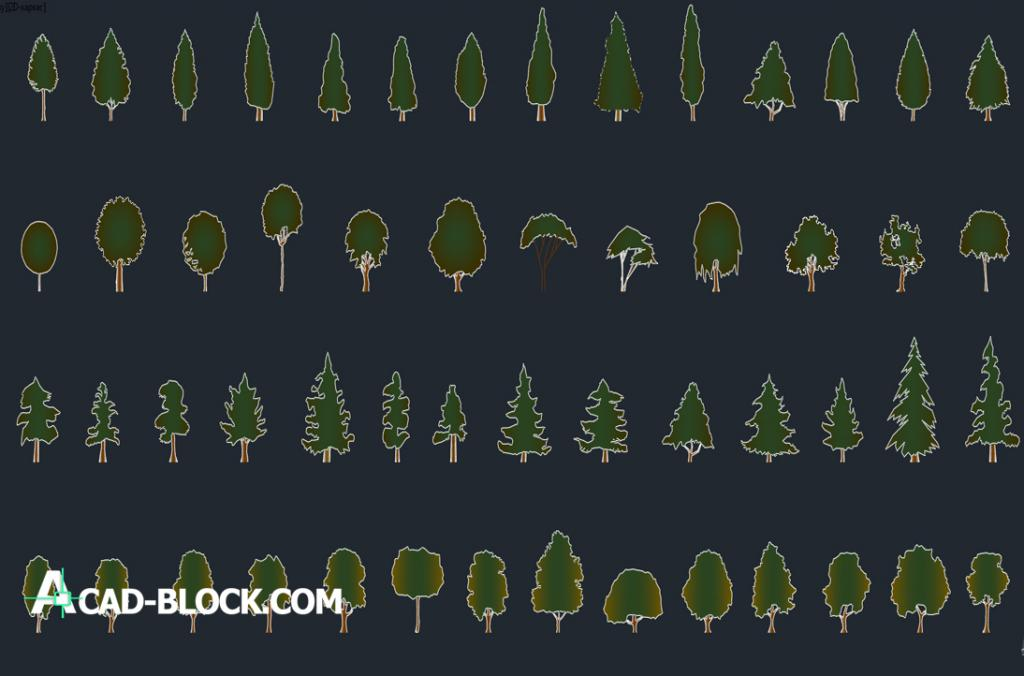 Simple trees dwg