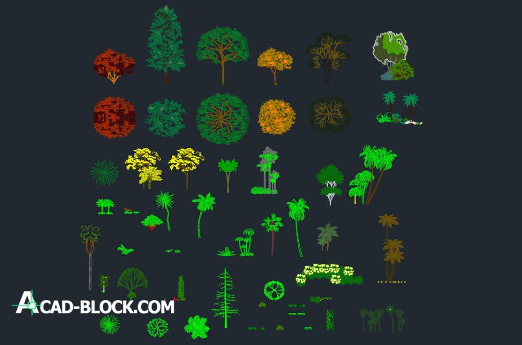 Tree CAD Block dwg
