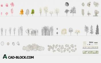 Trees in elevation and plant dwg autocad
