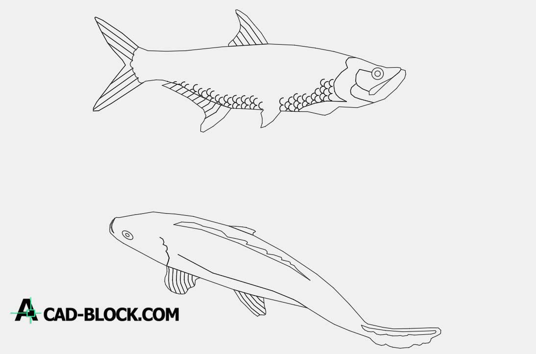 Fishes dwg cad